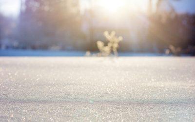 L'hiver et l'immunité